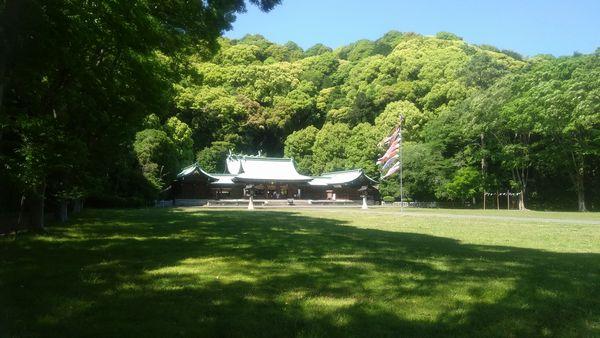 静岡県護国神社こいのぼり