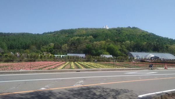 山中湖花の都公園駐車場側から