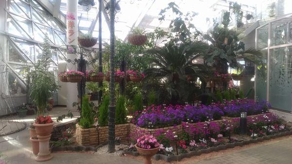 山中湖花の都公園フローラルドームふらら