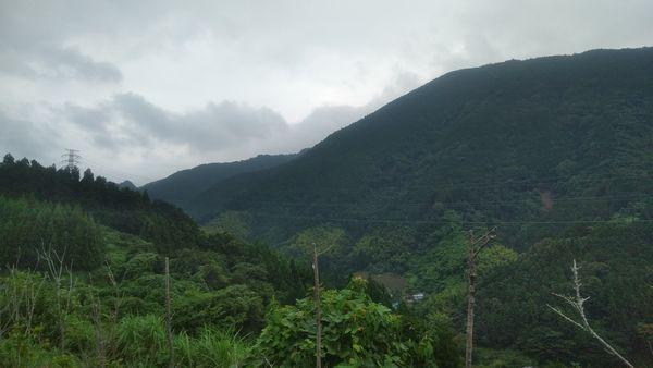 清水サービスエリア山の中