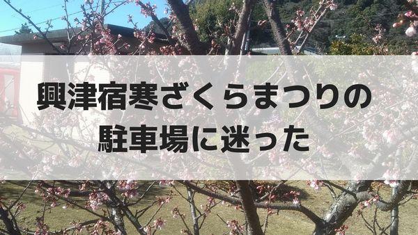 興津宿寒ざくらまつりの駐車場に迷った