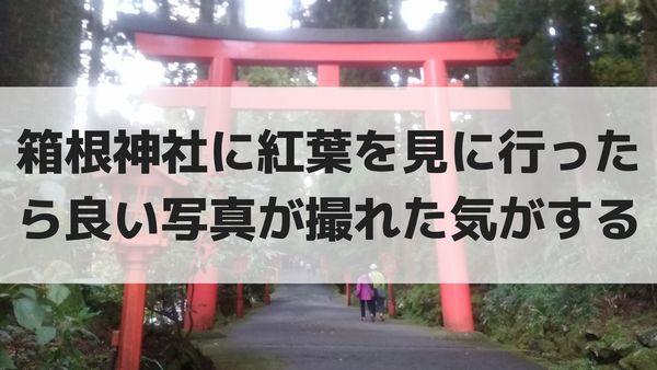 箱根神社に紅葉を見に行ったら良い写真が撮れた気がする