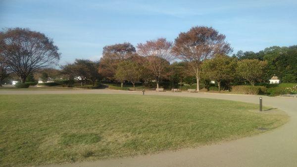 富士中央公園イベント広場