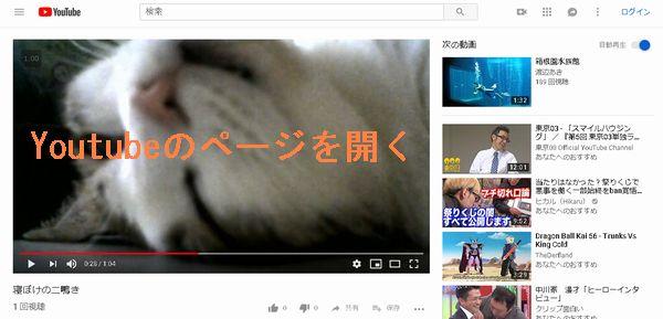 Youtubeピクチャー イン ピクチャーのやり方