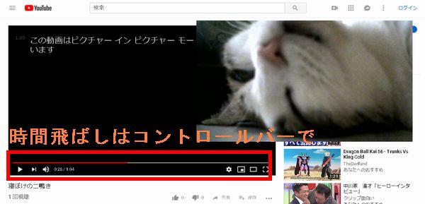 Youtubeピクチャー イン ピクチャーコントロールバー