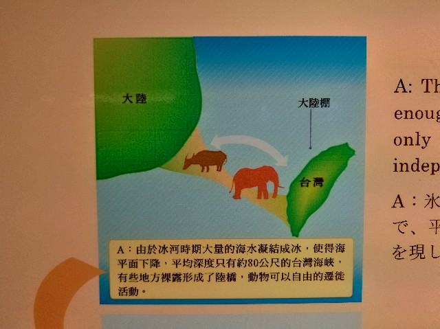 f:id:funstudy-taiwan:20200905143522j:image