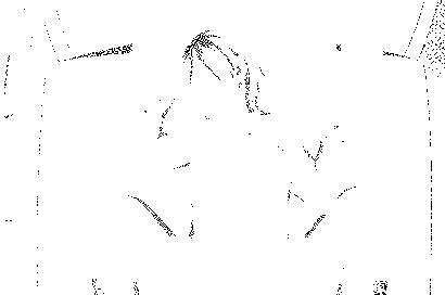 f:id:furan:20170213234923p:image