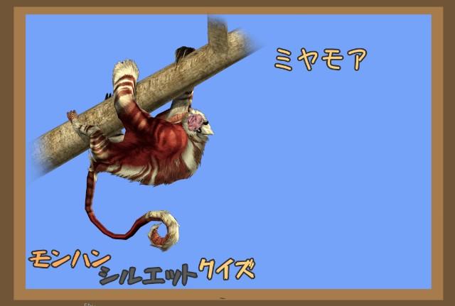 f:id:furesuburasut:20200513200333j:plain