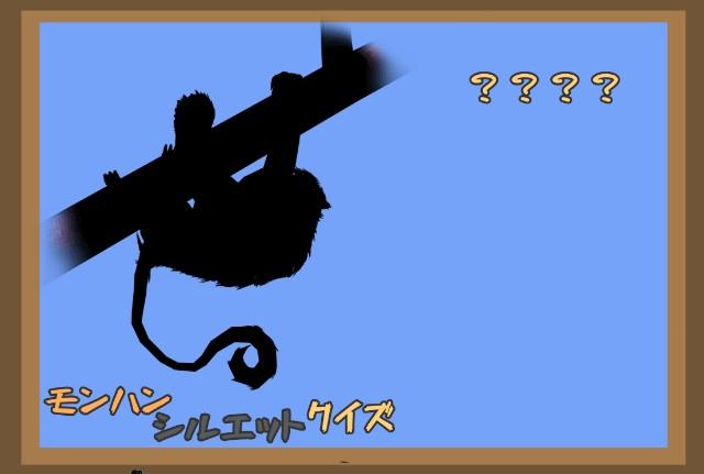 f:id:furesuburasut:20200513200430j:plain