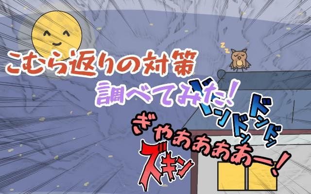 f:id:furesuburasut:20200706181253j:plain