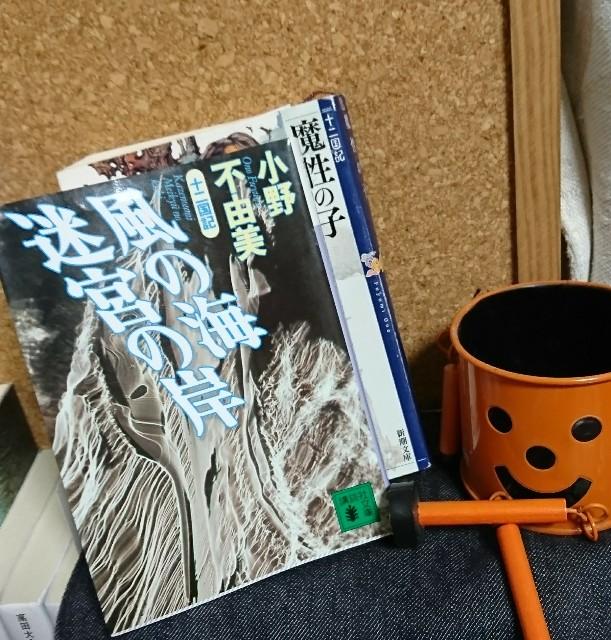 f:id:furikake-gohan:20181228071749j:plain