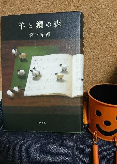 f:id:furikake-gohan:20190128212814j:plain