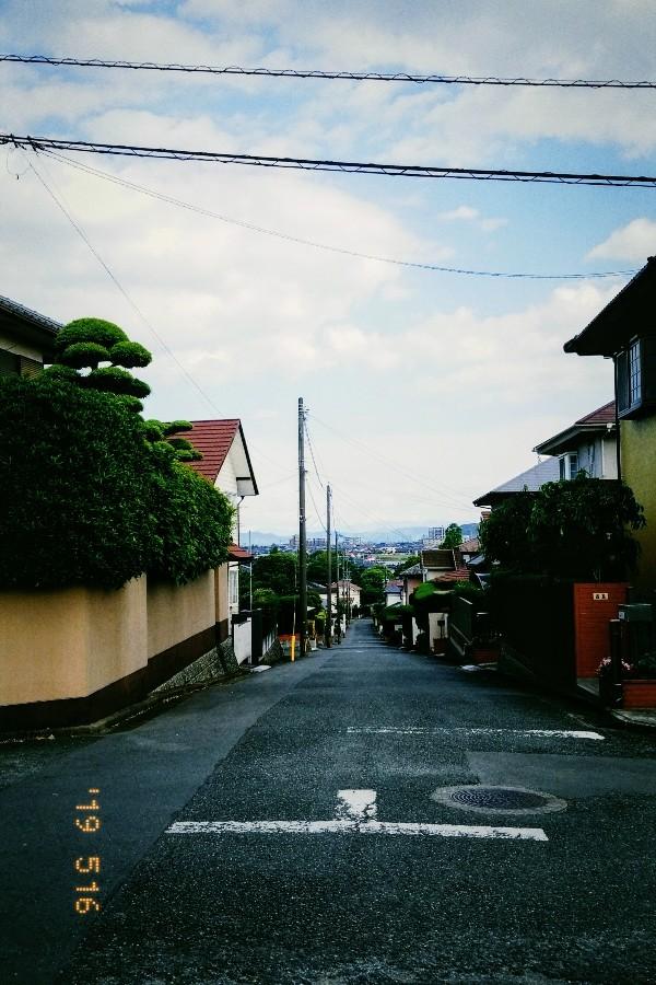 f:id:furukuma:20190516231836j:image
