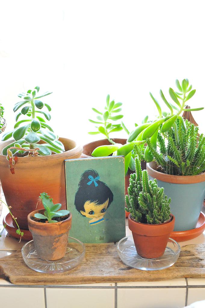 植物の中に飾った女の子のイラストが可愛い木製のボード