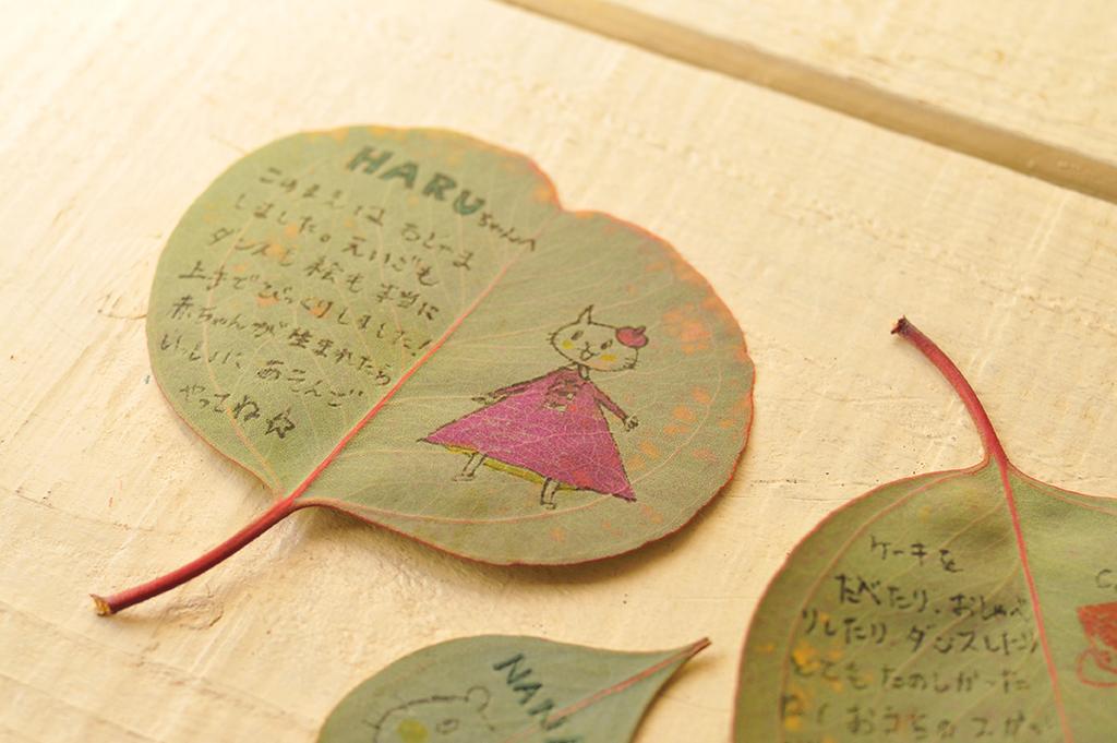 ユーカリの葉に手紙や絵を書く-ふるものせいかつ図鑑