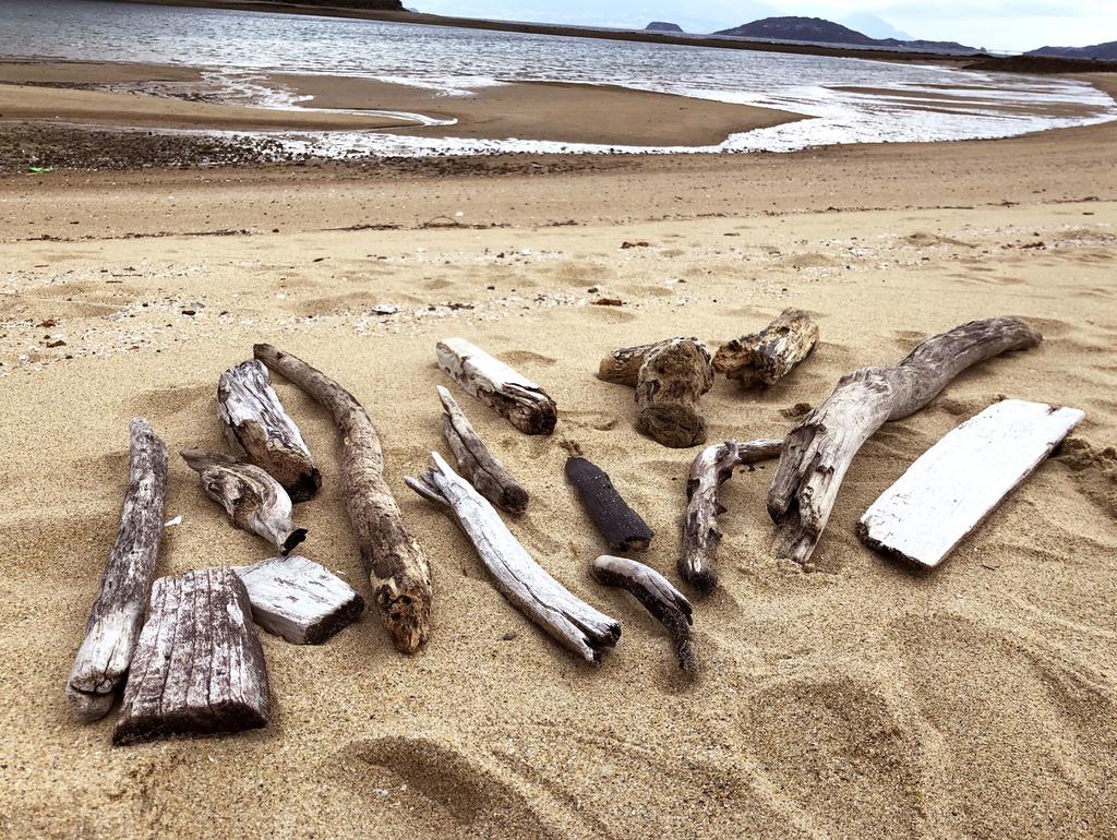 拾った大きな流木たちを海岸に並べる-ふるものせいかつ図鑑
