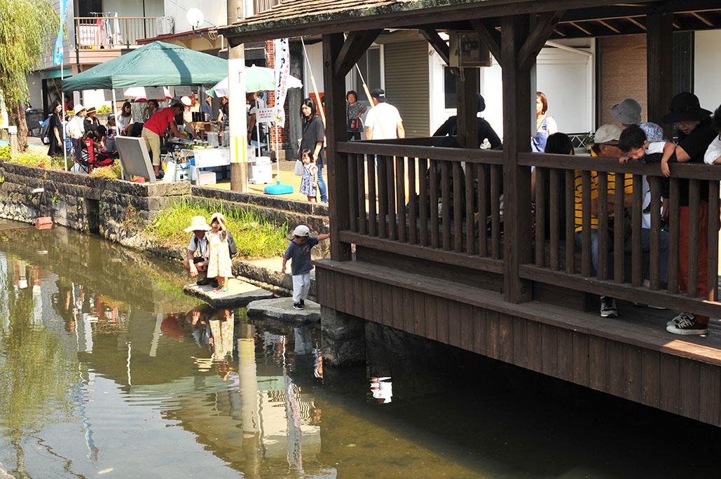 甲佐蚤の市では鯉も泳ぐ川沿いに出店ブースが並ぶ
