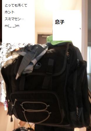 f:id:furusatonouzei091:20161114230241p:plain