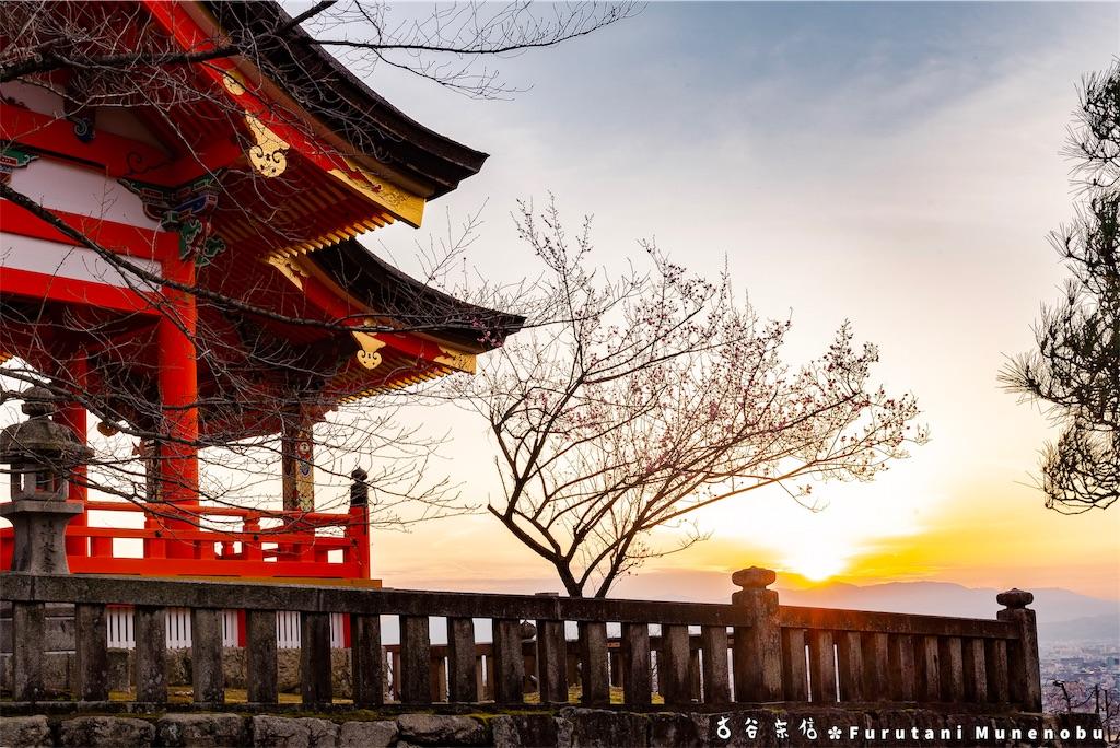 f:id:furutanimunenobu:20190223224639j:image