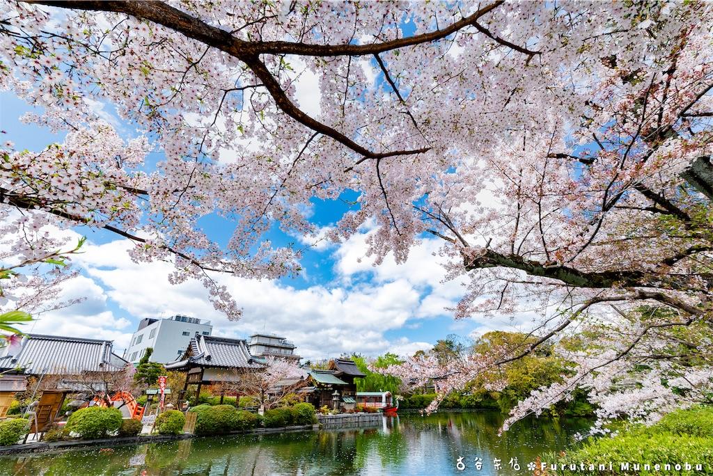 f:id:furutanimunenobu:20190420093223j:image