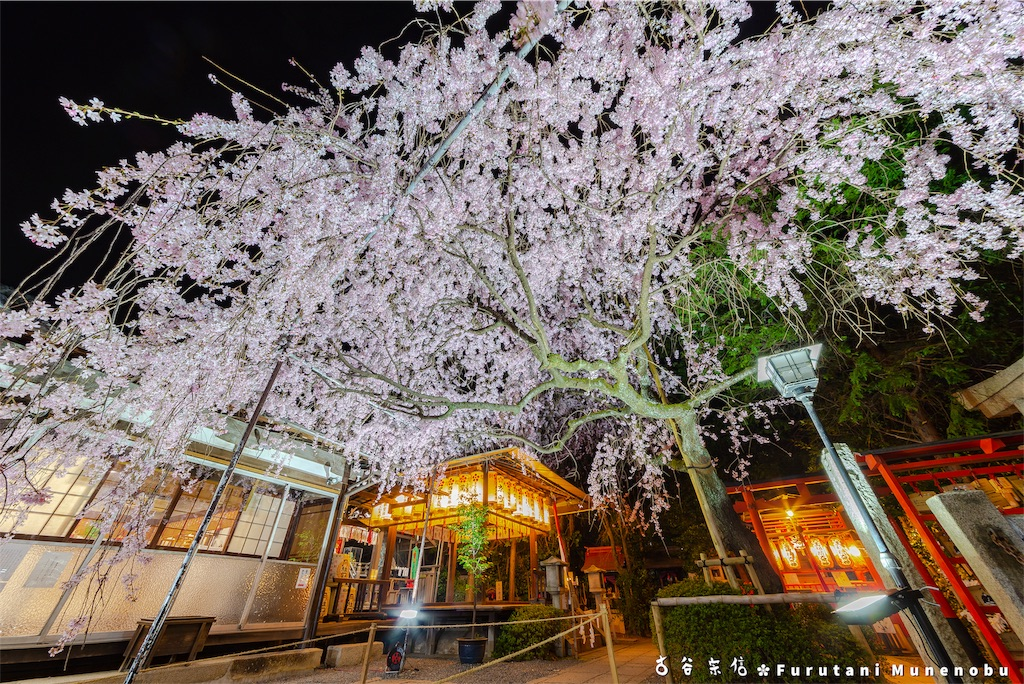 f:id:furutanimunenobu:20190420093227j:image