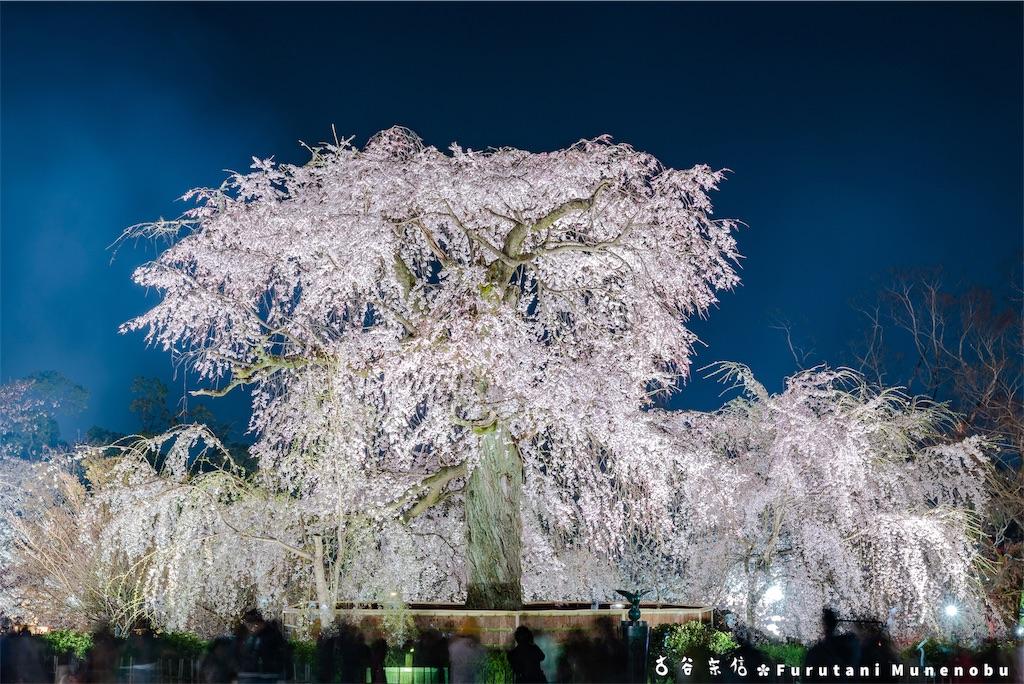 f:id:furutanimunenobu:20190420093243j:image