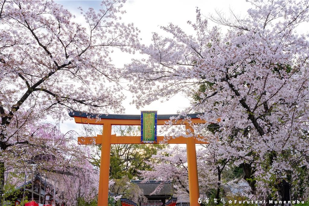 f:id:furutanimunenobu:20190420135041j:image