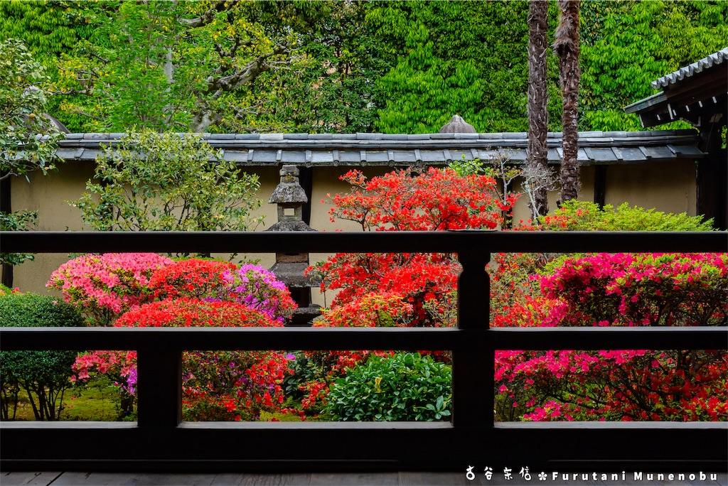f:id:furutanimunenobu:20190504134048j:image