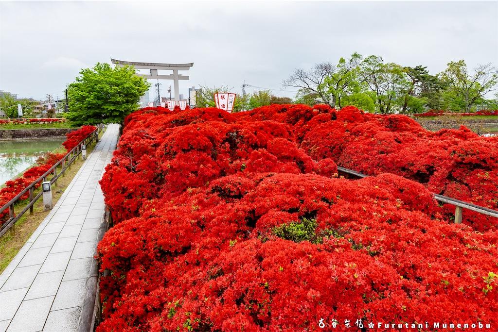 f:id:furutanimunenobu:20190505213034j:image