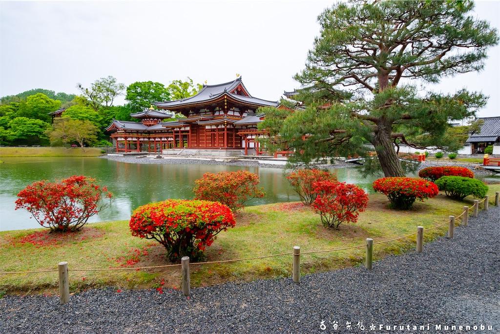 f:id:furutanimunenobu:20190508224009j:image