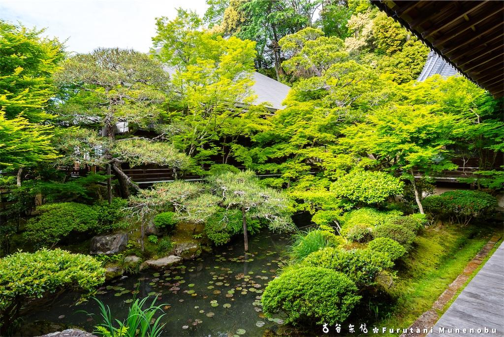 f:id:furutanimunenobu:20190512212954j:image