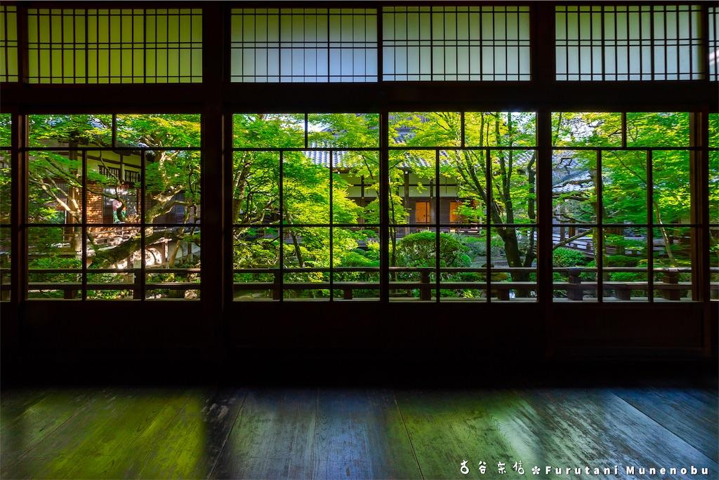 f:id:furutanimunenobu:20190512213322j:image