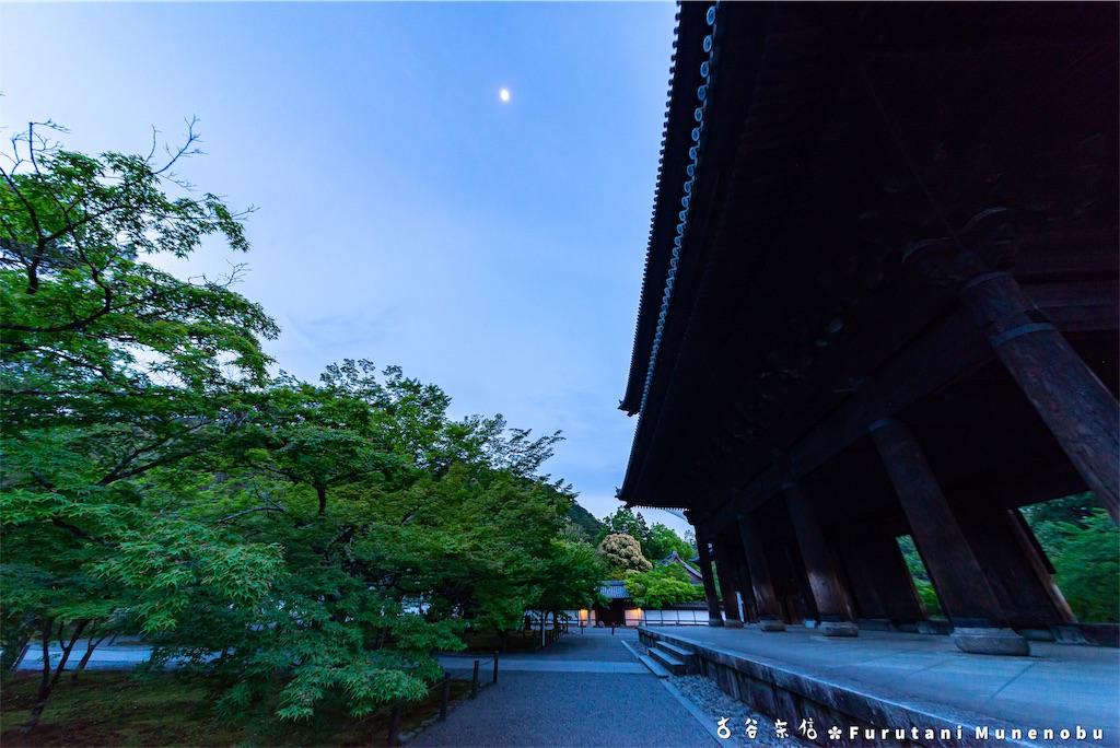 f:id:furutanimunenobu:20190524220631j:image