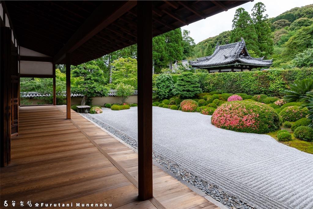 f:id:furutanimunenobu:20190615214030j:image