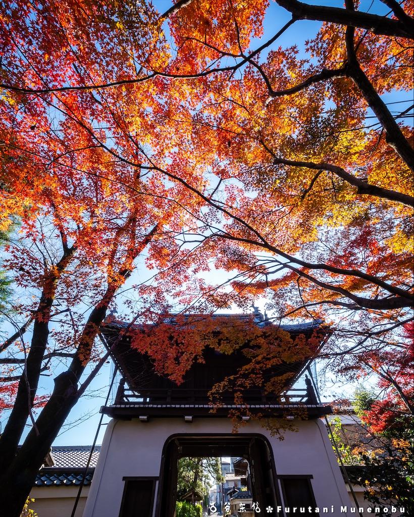 f:id:furutanimunenobu:20191223183536j:image