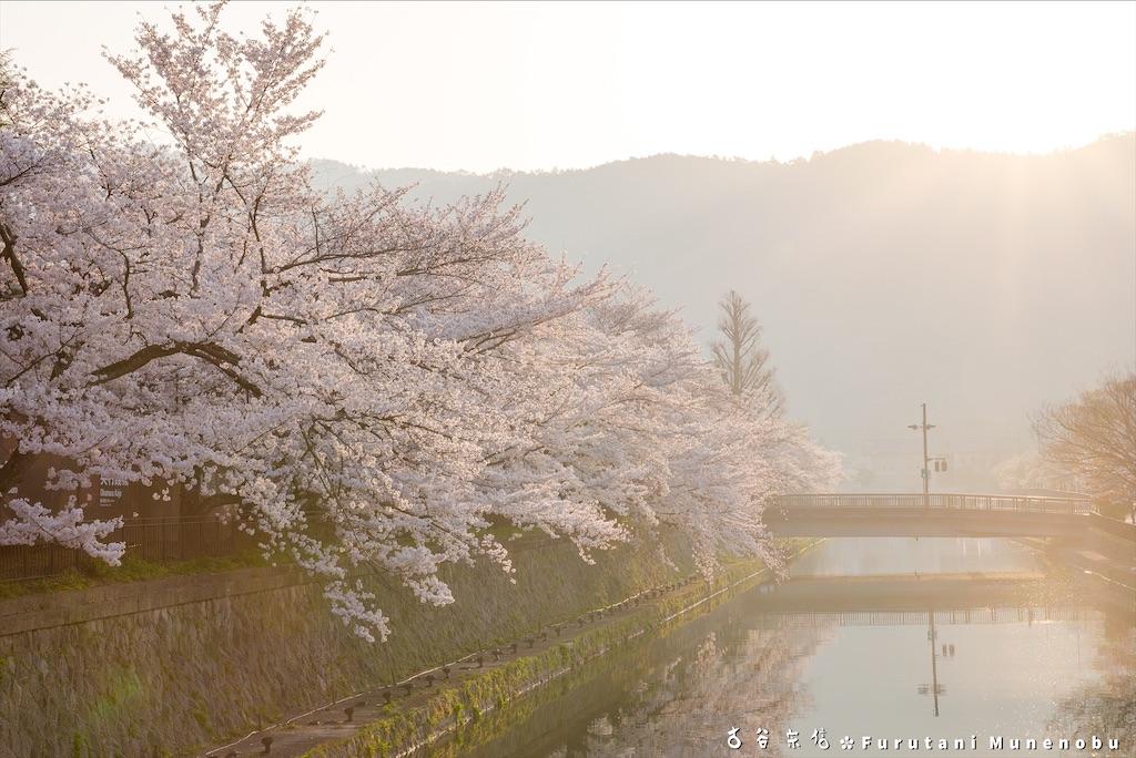 f:id:furutanimunenobu:20210218214445j:image