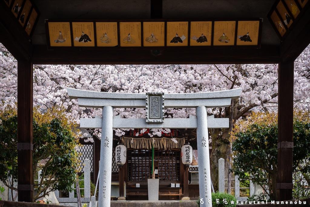 f:id:furutanimunenobu:20210428213128j:image
