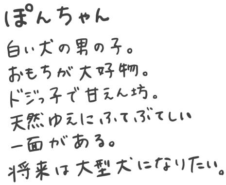 f:id:furuyan-pon:20210102202023j:plain