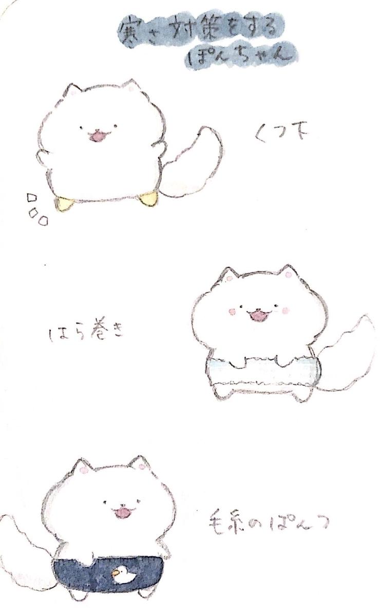 f:id:furuyan-pon:20211020212548j:plain