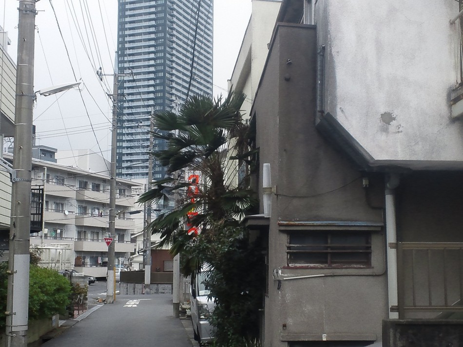 f:id:furuyatoshihiro:20120306222046j:image