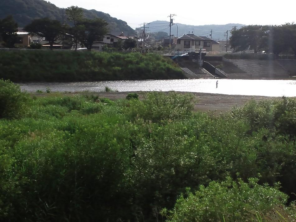 f:id:furuyatoshihiro:20120704205611j:image