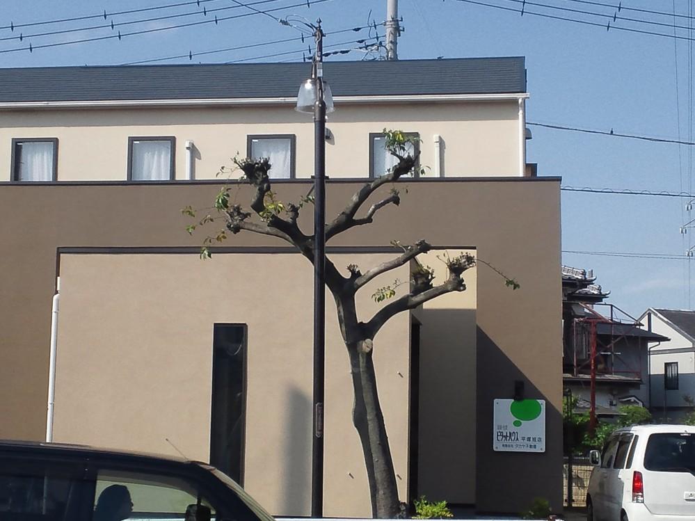 f:id:furuyatoshihiro:20140603221151j:image