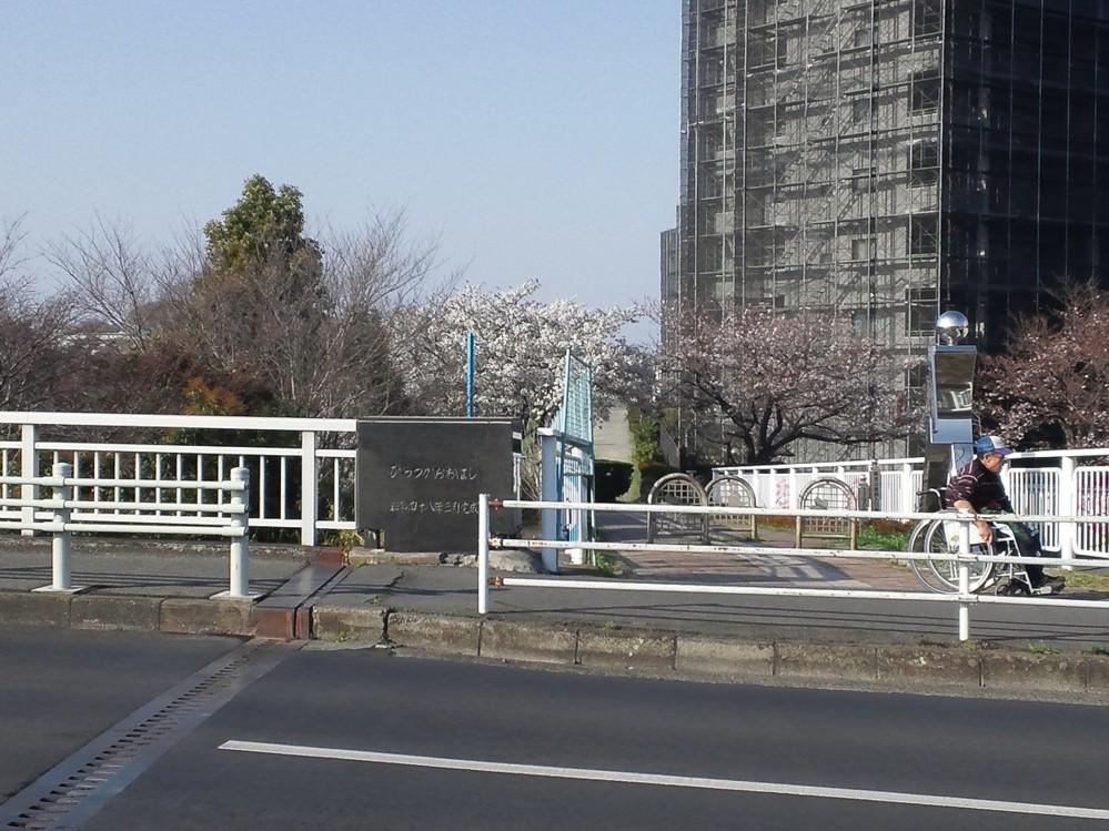 f:id:furuyatoshihiro:20150330225806j:image