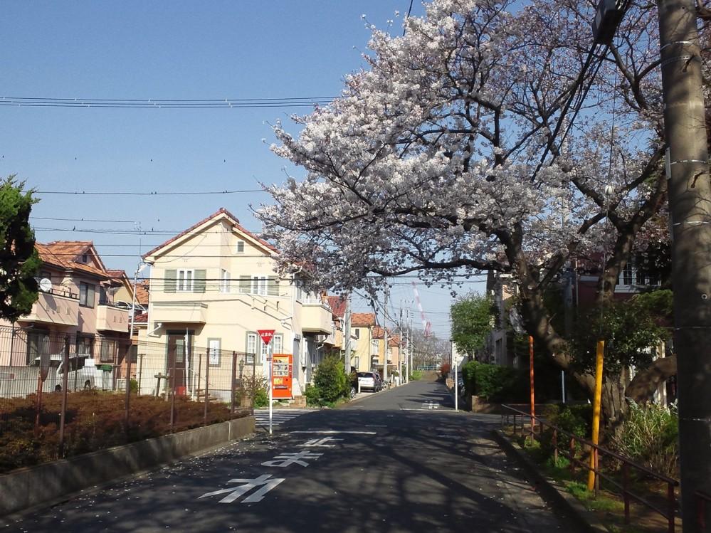 f:id:furuyatoshihiro:20150330225808j:image