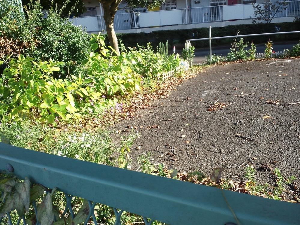 f:id:furuyatoshihiro:20181105142540j:image