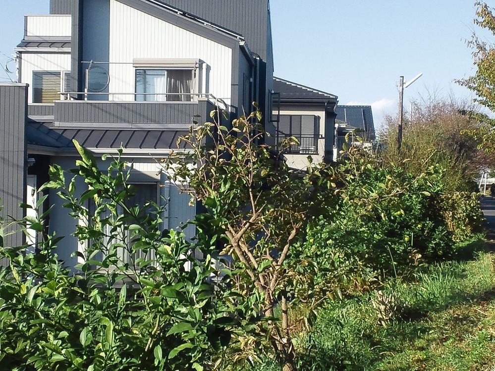 f:id:furuyatoshihiro:20181105150355j:image