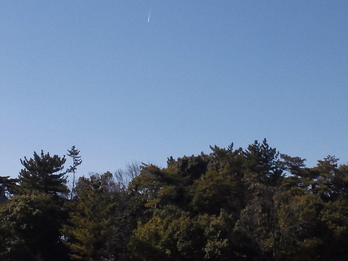 f:id:furuyatoshihiro:20200226174751j:plain