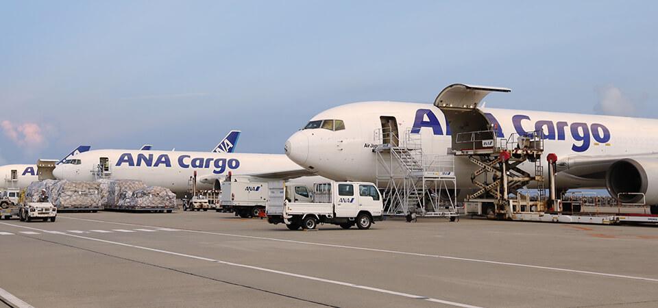 ANA Cargo Boeing 767-300 Freighter