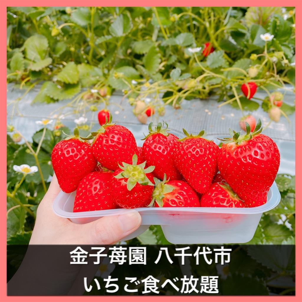 f:id:fusan_no_tabemono_blogs:20210322085152j:image