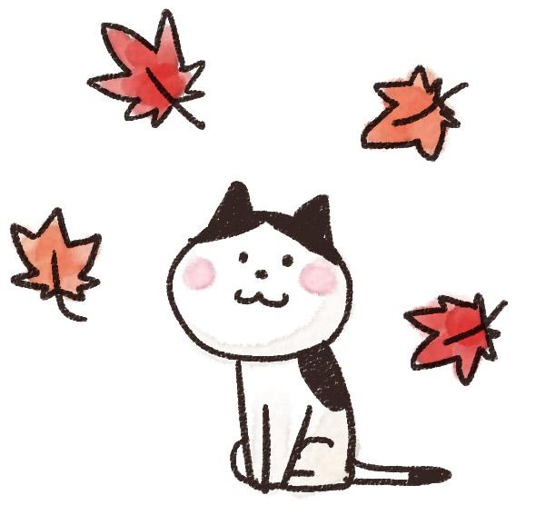 f:id:fusani:20181101213416j:plain